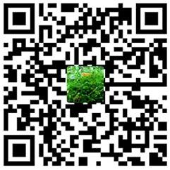 腾达AC9基于华硕RT-AC1200G+源码及梅林源码固件改造  技术小站